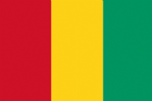 GUINEA - HAND WAVING FLAG (MEDIUM)